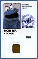 Example of NIH Smart Card
